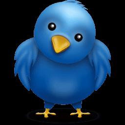 twitter-bird-big